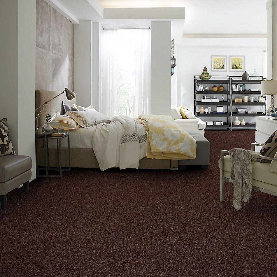 Shaw Floors Value Collections Thrive Net Dark Fudge 00701_E9169