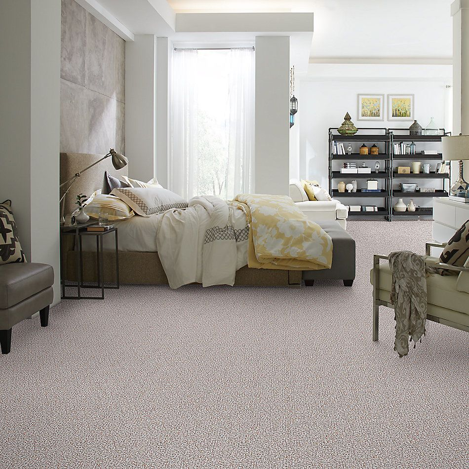 Shaw Floors Value Collections Pure Waters 15′ Net Pebble Path 00701_E9280