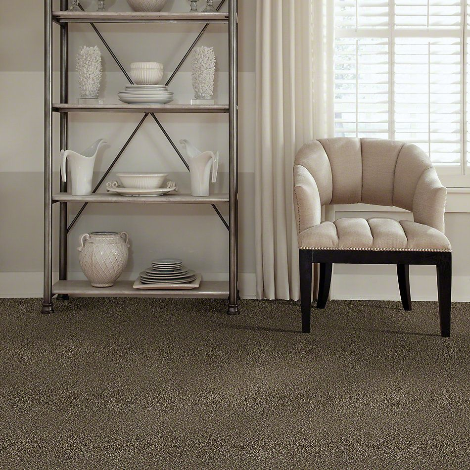 Shaw Floors Simply The Best Because We Can III 15′ Pinecone 00701_E9288