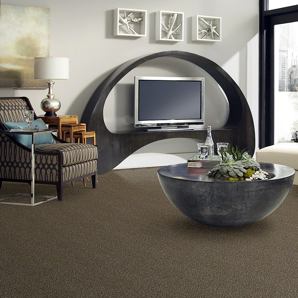 Shaw Floors Value Collections Because We Can I 12′ Net Pinecone 00701_E9312