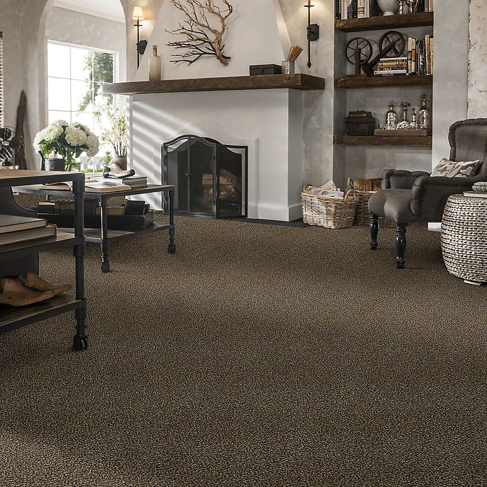 Shaw Floors Value Collections Because We Can I 15′ Net Pinecone 00701_E9313