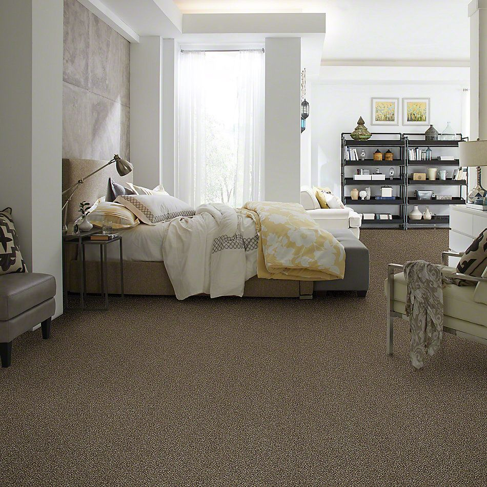 Shaw Floors Value Collections Because We Can III 12′ Net Pinecone 00701_E9316