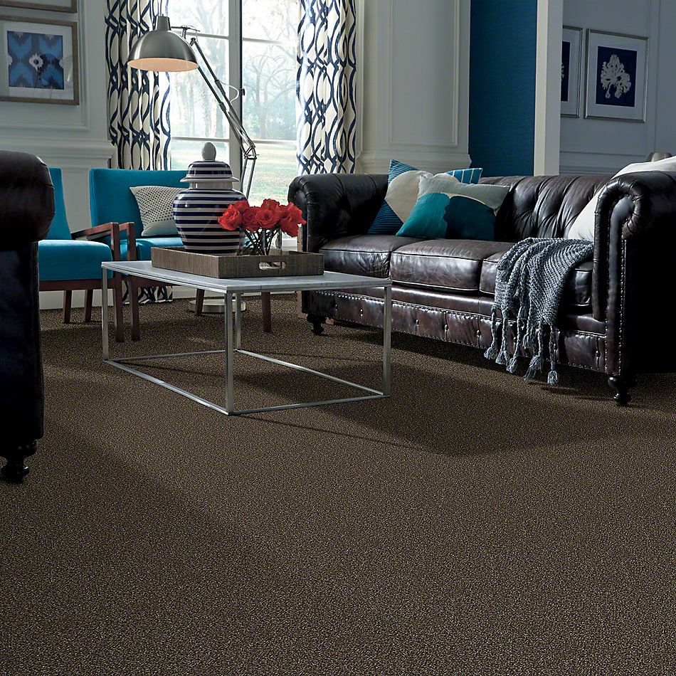 Shaw Floors Simply The Best Of Course We Can II 12′ River Walk 00701_E9423