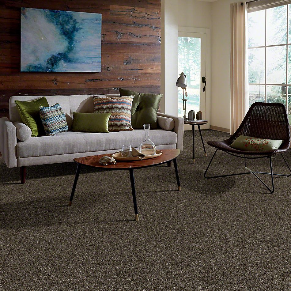 Shaw Floors Value Collections Of Course We Can I 12 Net River Walk 00701_E9429