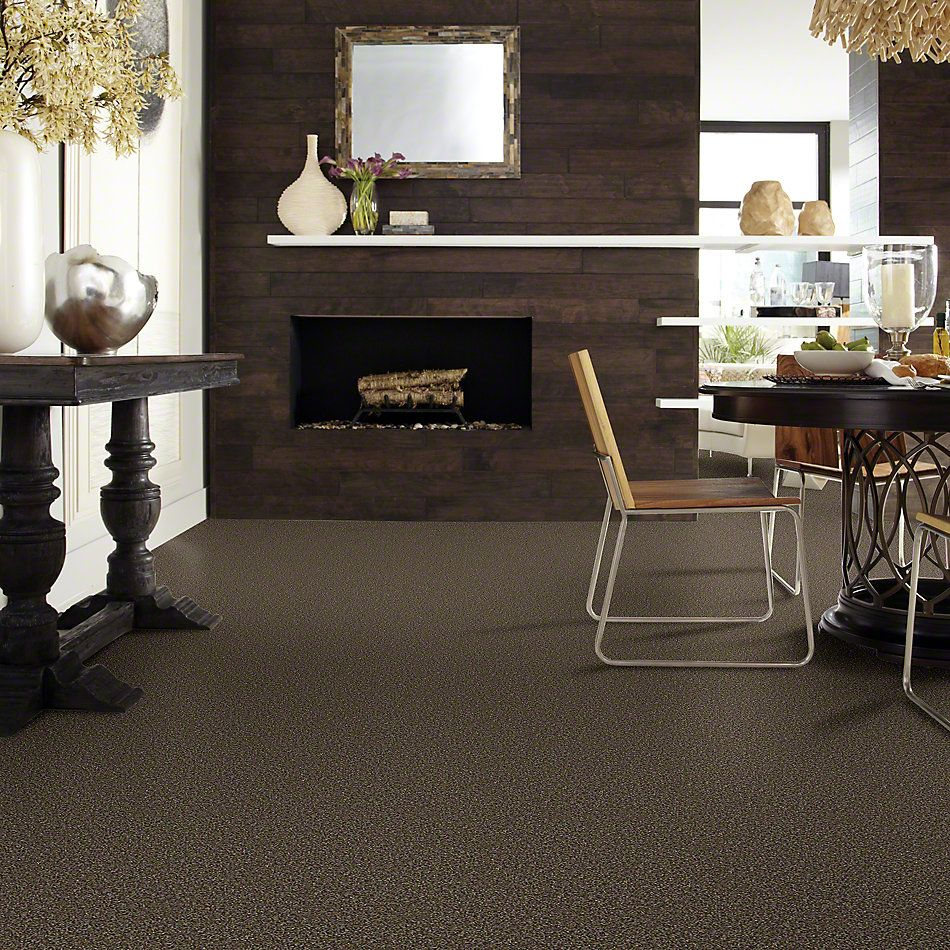 Shaw Floors Value Collections Of Course We Can II 12′ Net River Walk 00701_E9435