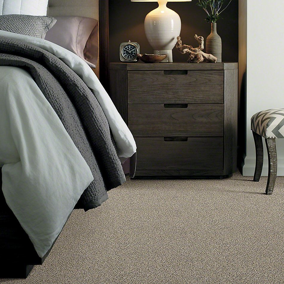 Shaw Floors Value Collections All Set II Net River Rock 00701_E9895