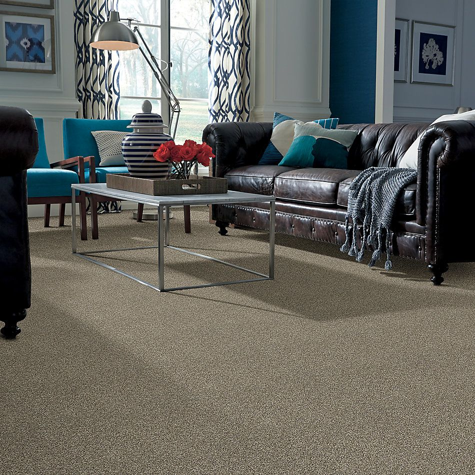 Shaw Floors Value Collections Frappe II Clay 00701_E9913
