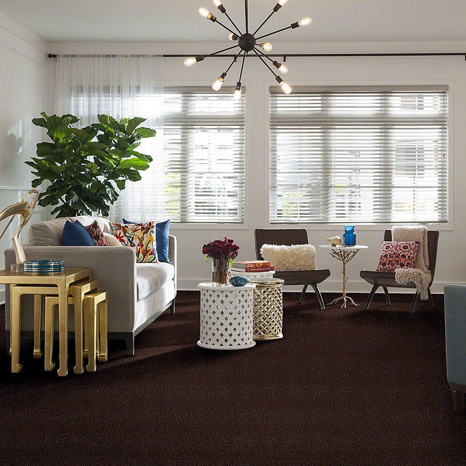 Shaw Floors Flourish Dark Fudge 00701_Q4206