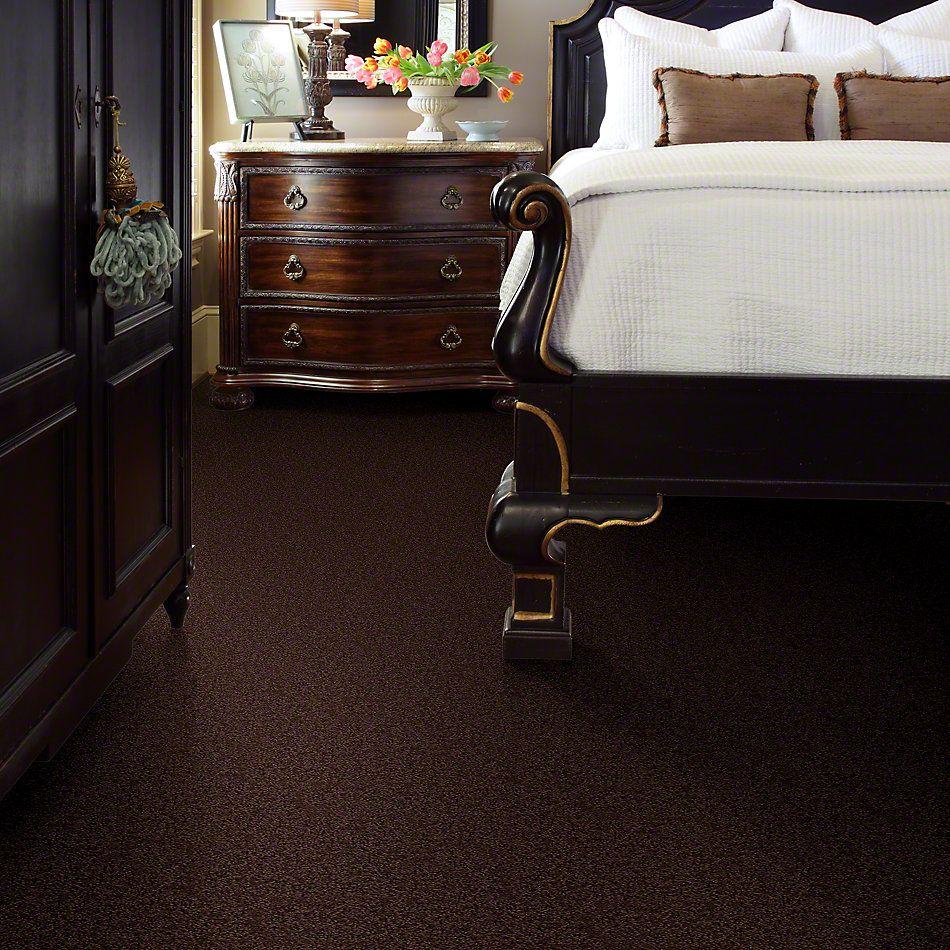 Shaw Floors SFA Garden Lake Dark Fudge 00701_Q4208