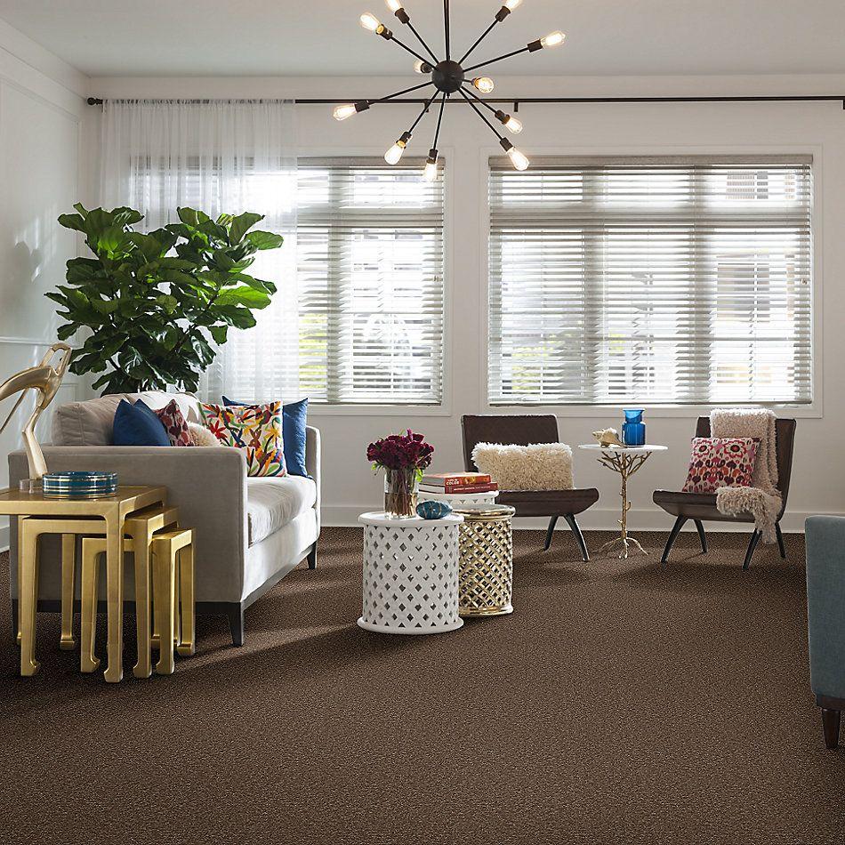 Shaw Floors Queen Point Guard 15′ Granola 00701_Q4885