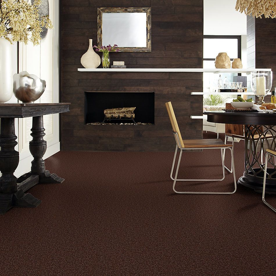 Shaw Floors Apd/Sdc Haderlea Dark Fudge 00701_QC314