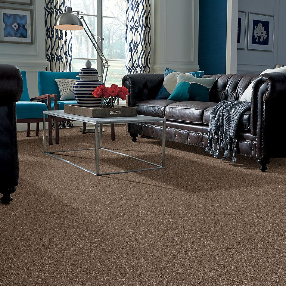 Shaw Floors Roll Special Xv866 Granola 00701_XV866