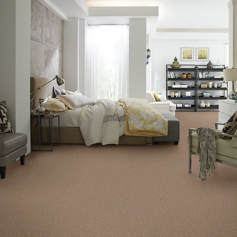 Shaw Floors SFA Enjoy The Moment II 15′ Riverbed 00702_0C139