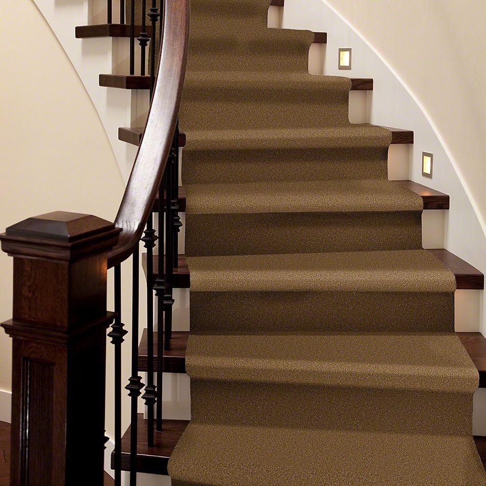 Shaw Floors Shaw Flooring Gallery Highland Cove III 12 Belt Buckle 00702_5223G