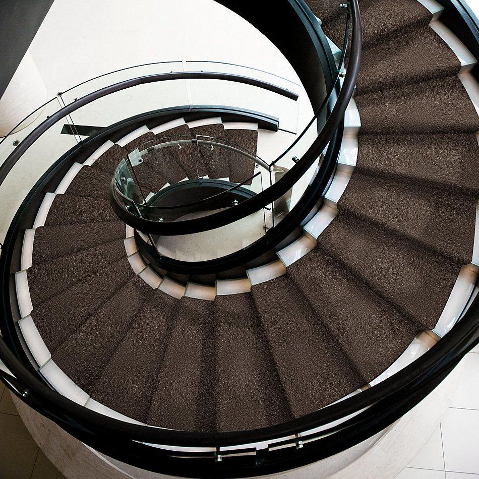 Shaw Floors Shaw Flooring Gallery Ellendale 15′ Landslide 00702_5301G