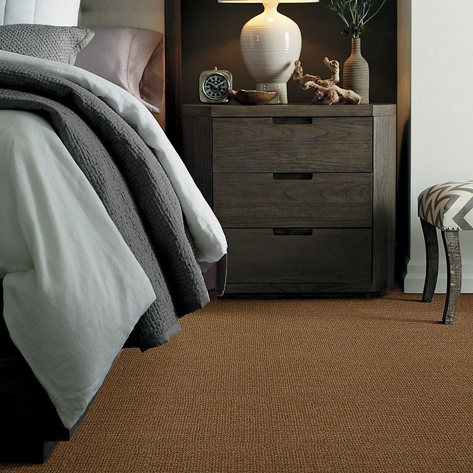 Shaw Floors Shaw Flooring Gallery Unleashed Leather Bound 00702_5514G