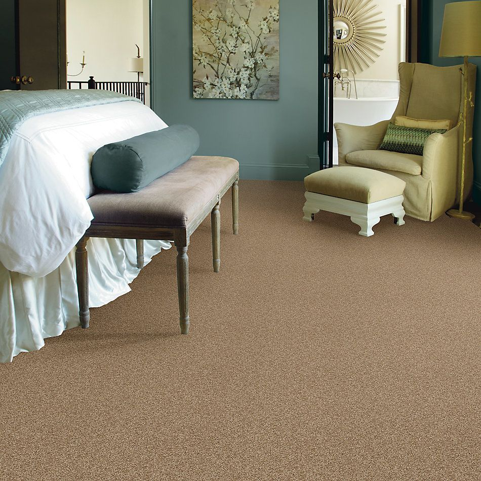 Shaw Floors Shaw Flooring Gallery Inspired By I Twig 00702_5559G