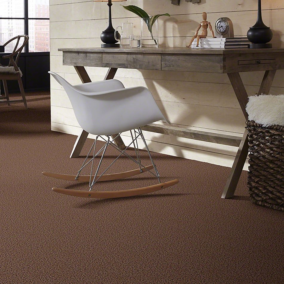 Shaw Floors Shaw Design Center Becoming Brown Sugar 00702_5C521