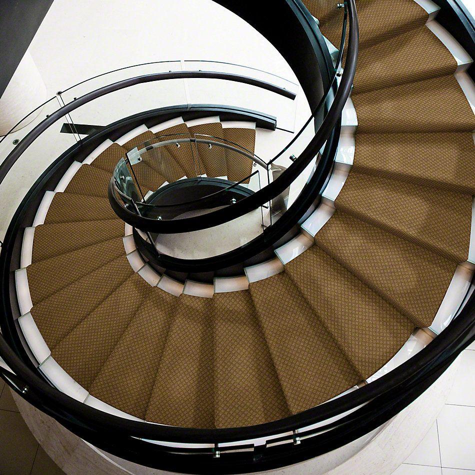 Shaw Floors Shaw Design Center Townelake Saddle 00702_5C553