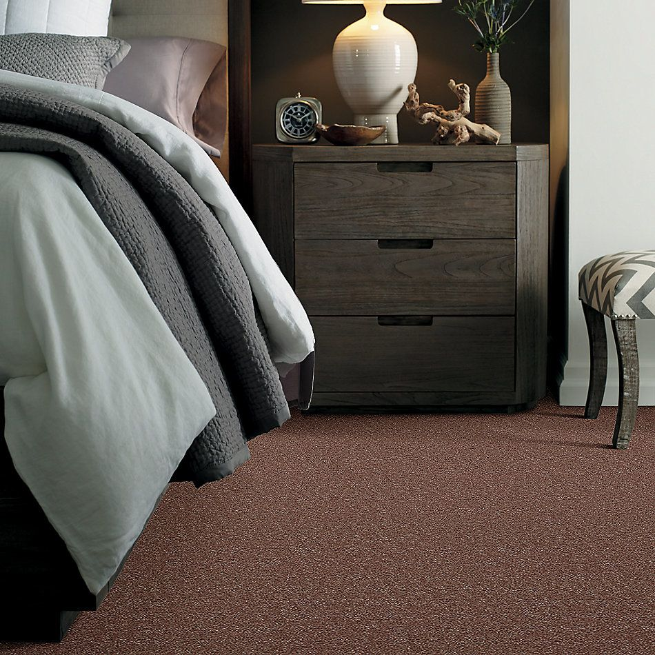 Shaw Floors Shaw Design Center Larimore 12′ Landslide 00702_5C577