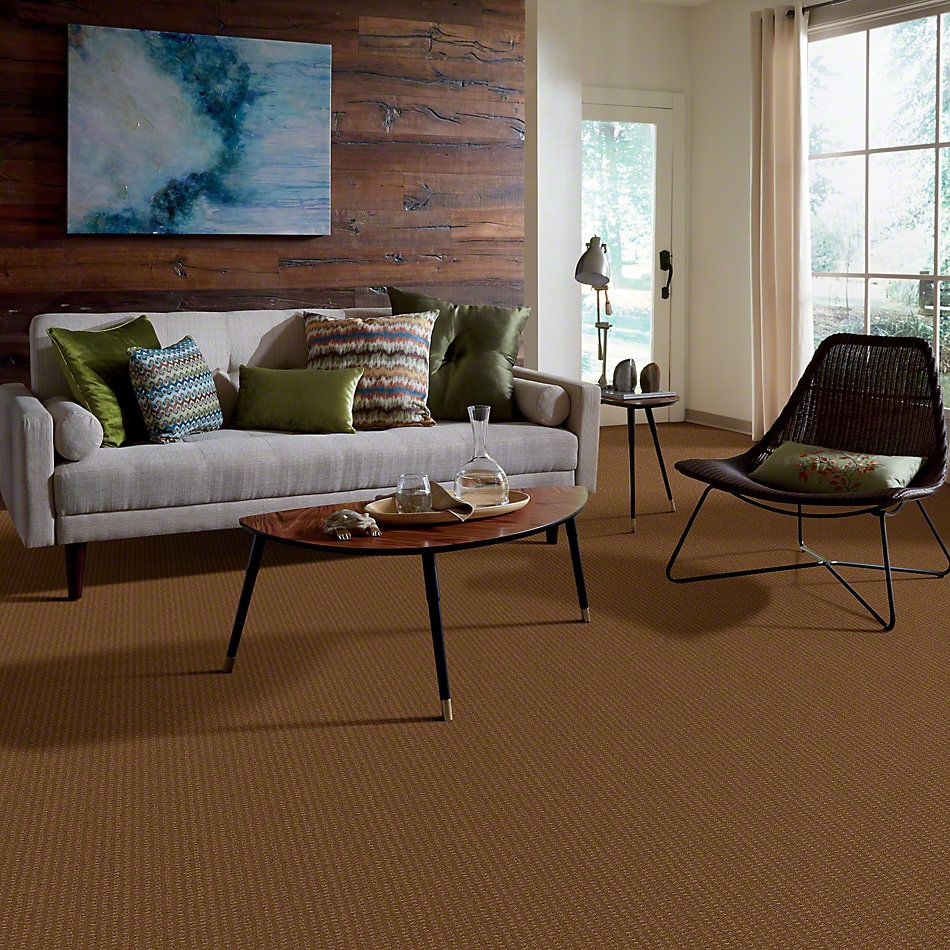 Shaw Floors Shaw Design Center Warm Welcome Pebble Creek 00702_5C587