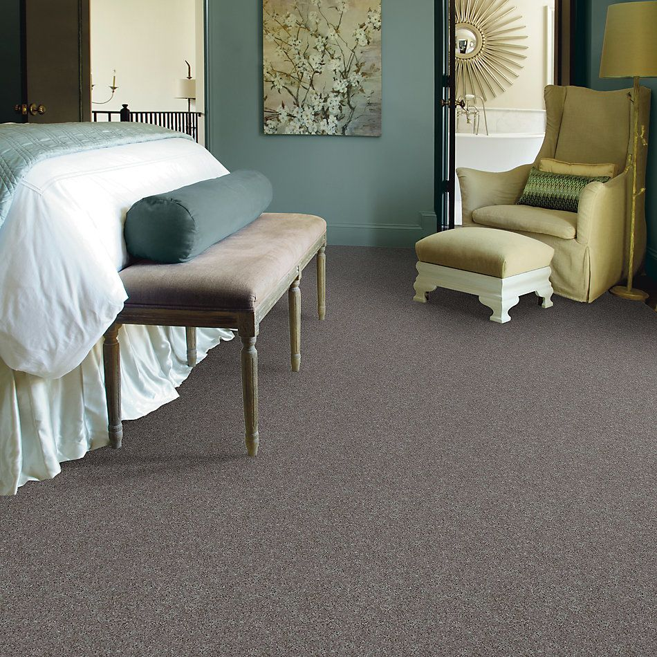 Shaw Floors Shaw Design Center Beautifully Simple II 12 Mocha Frost 00702_5C747