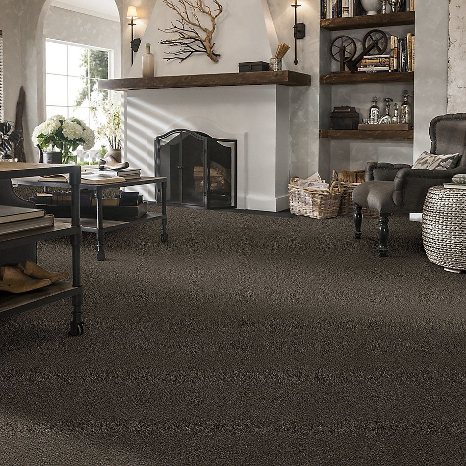 Shaw Floors Simply The Best Boundless Iv Gateway 00702_5E488
