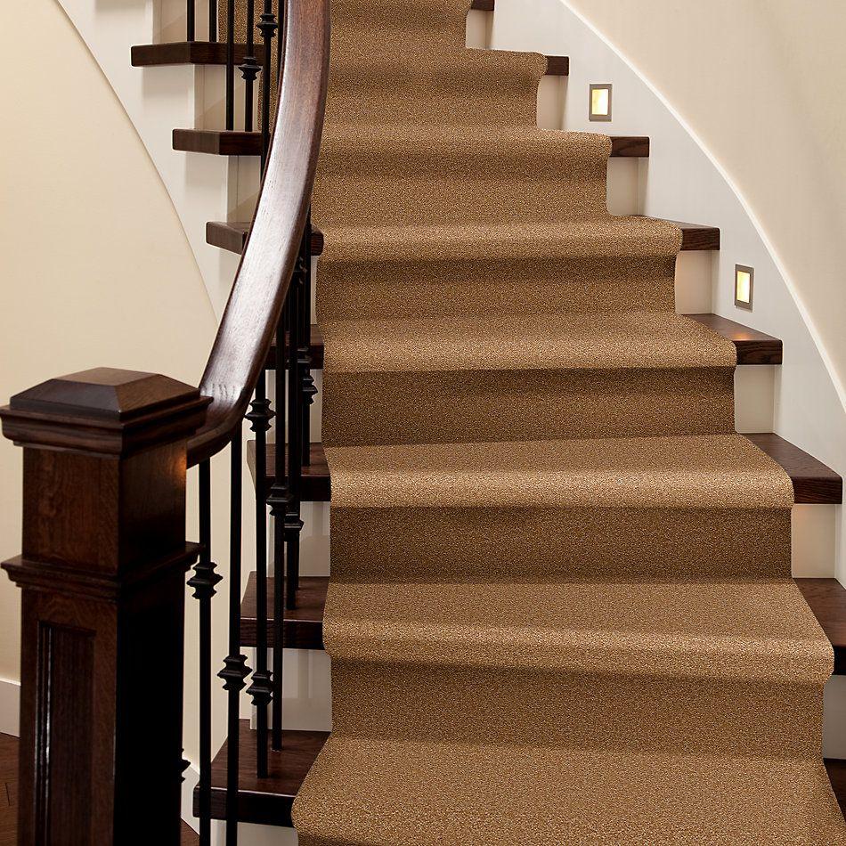 Shaw Floors Value Collections Sandy Hollow Cl Iv Net Peanut Brittle 00702_5E512