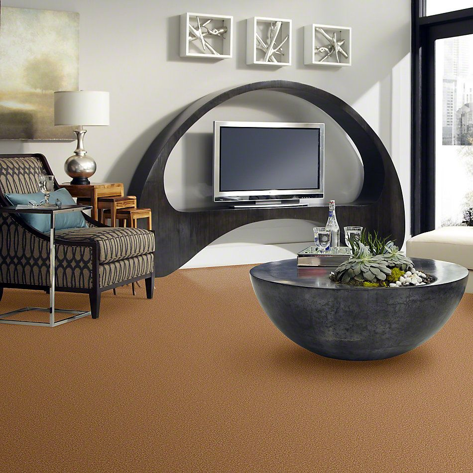 Shaw Floors Sandy Hollow III 12′ Peanut Brittle 00702_Q4277