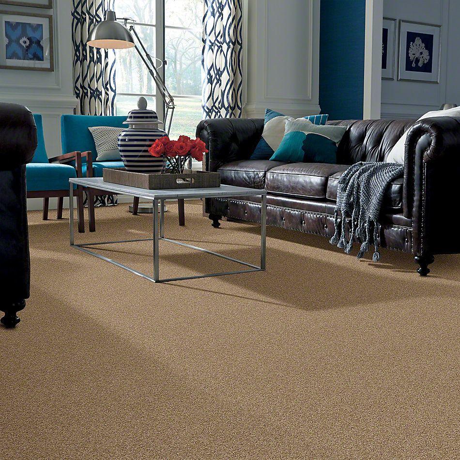 Shaw Floors Enduring Comfort II Twig 00702_E0342