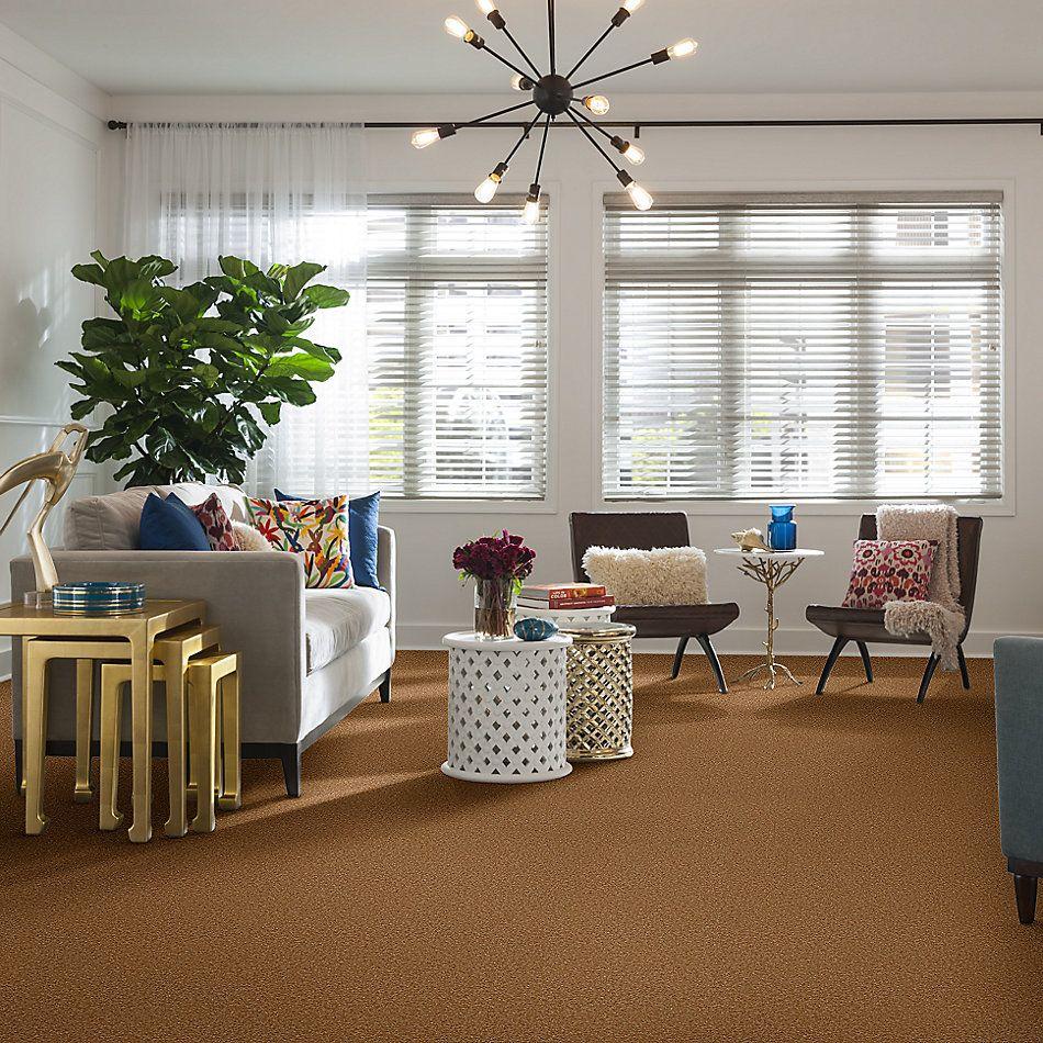 Shaw Floors Sandy Hollow Classic Iv 15′ Peanut Brittle 00702_E0555