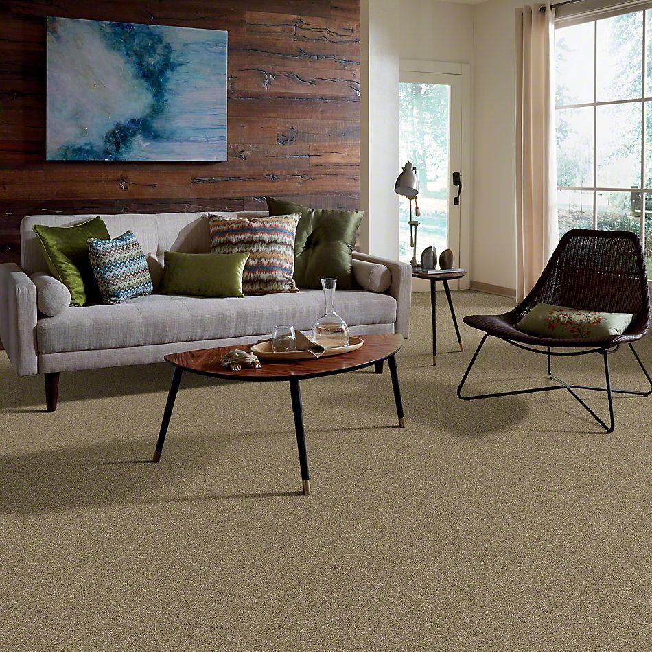 Shaw Floors Foundations Invitation Only I Tree Bark 00702_E0630