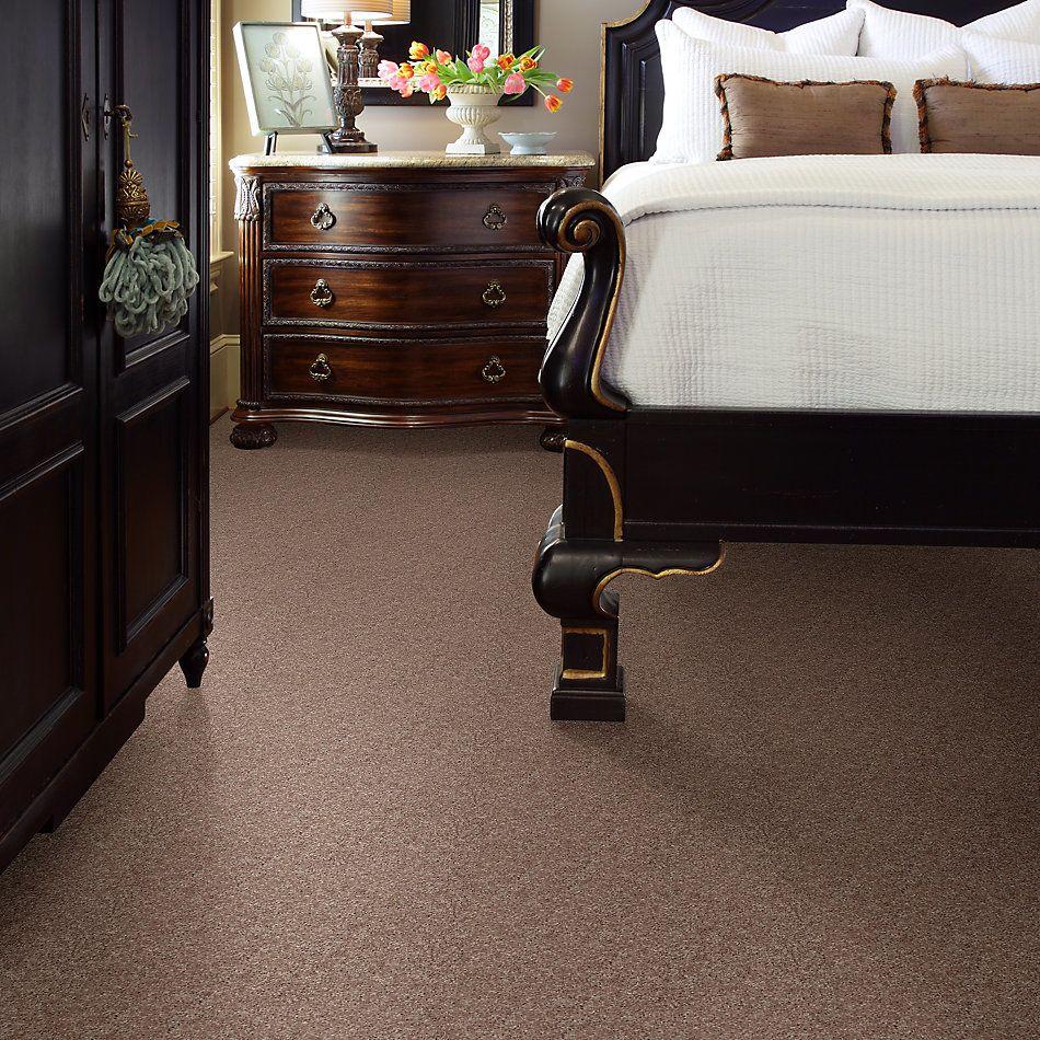 Shaw Floors Value Collections Xv540 Net Deer Tracks 00702_E0756