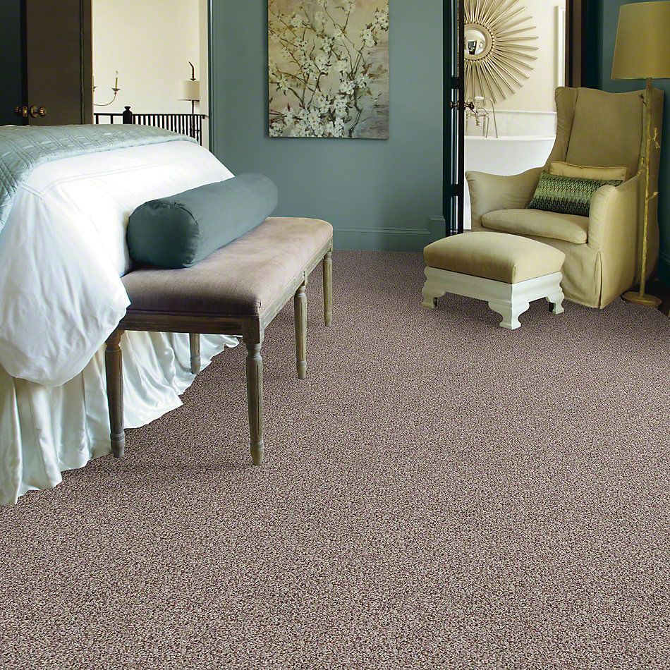 Shaw Floors Value Collections Color Flair Net Toast 00702_E0853