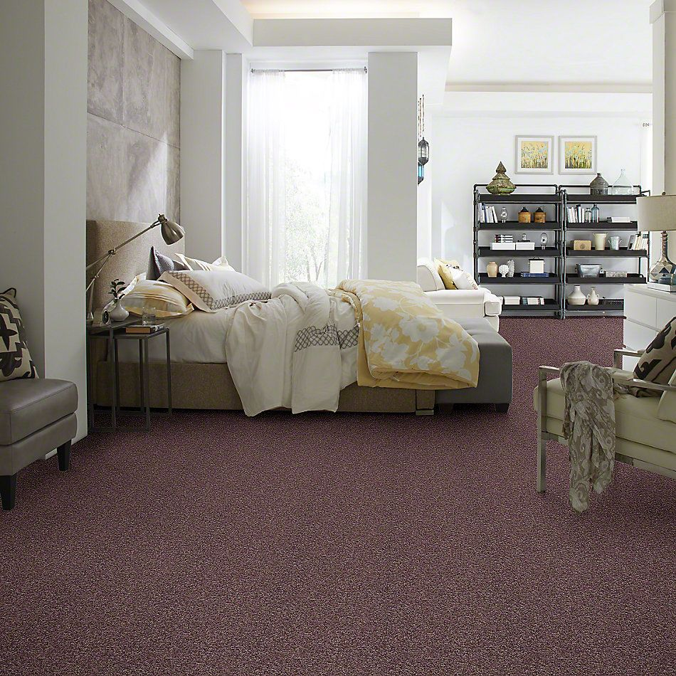Shaw Floors Value Collections Dazzle Me Texture Net Rye 00702_E0884
