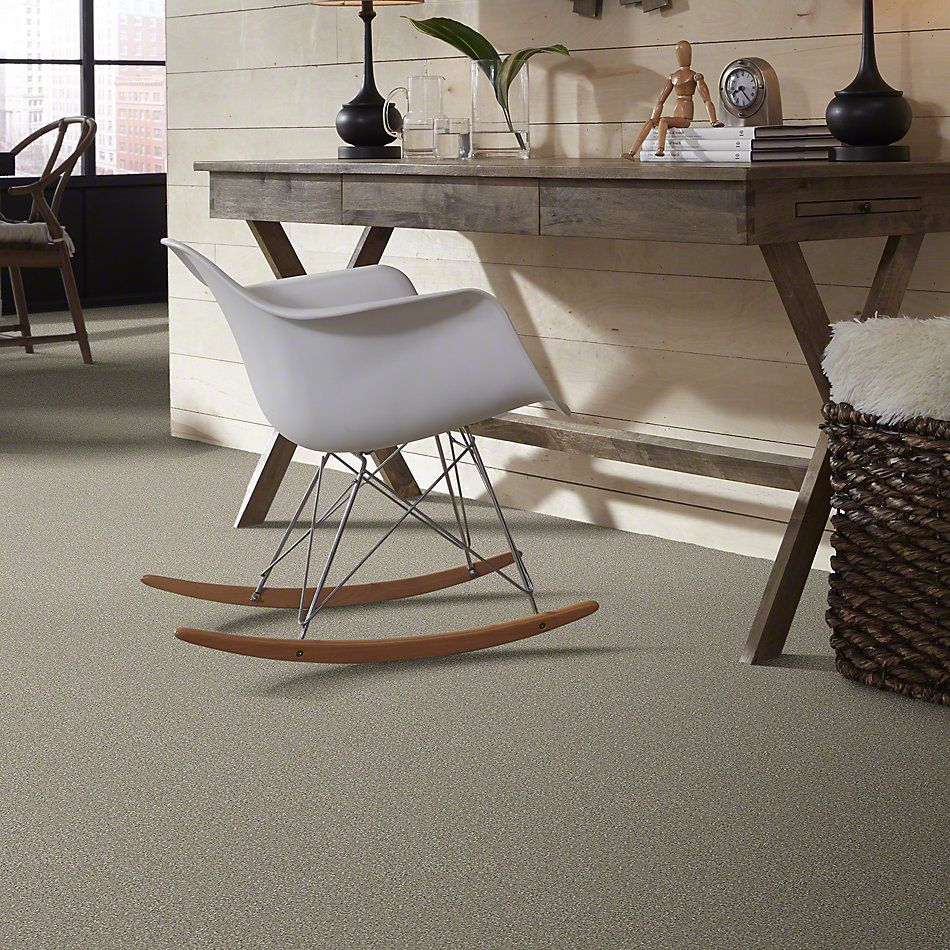 Shaw Floors Value Collections You Know It Net Coastal Fog 00702_E0927