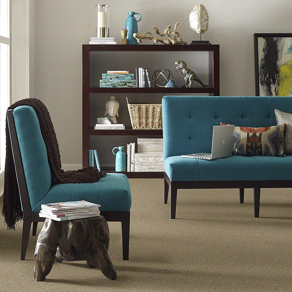 Shaw Floors Value Collections Invitation  Only I Net Tree Bark 00702_E9026