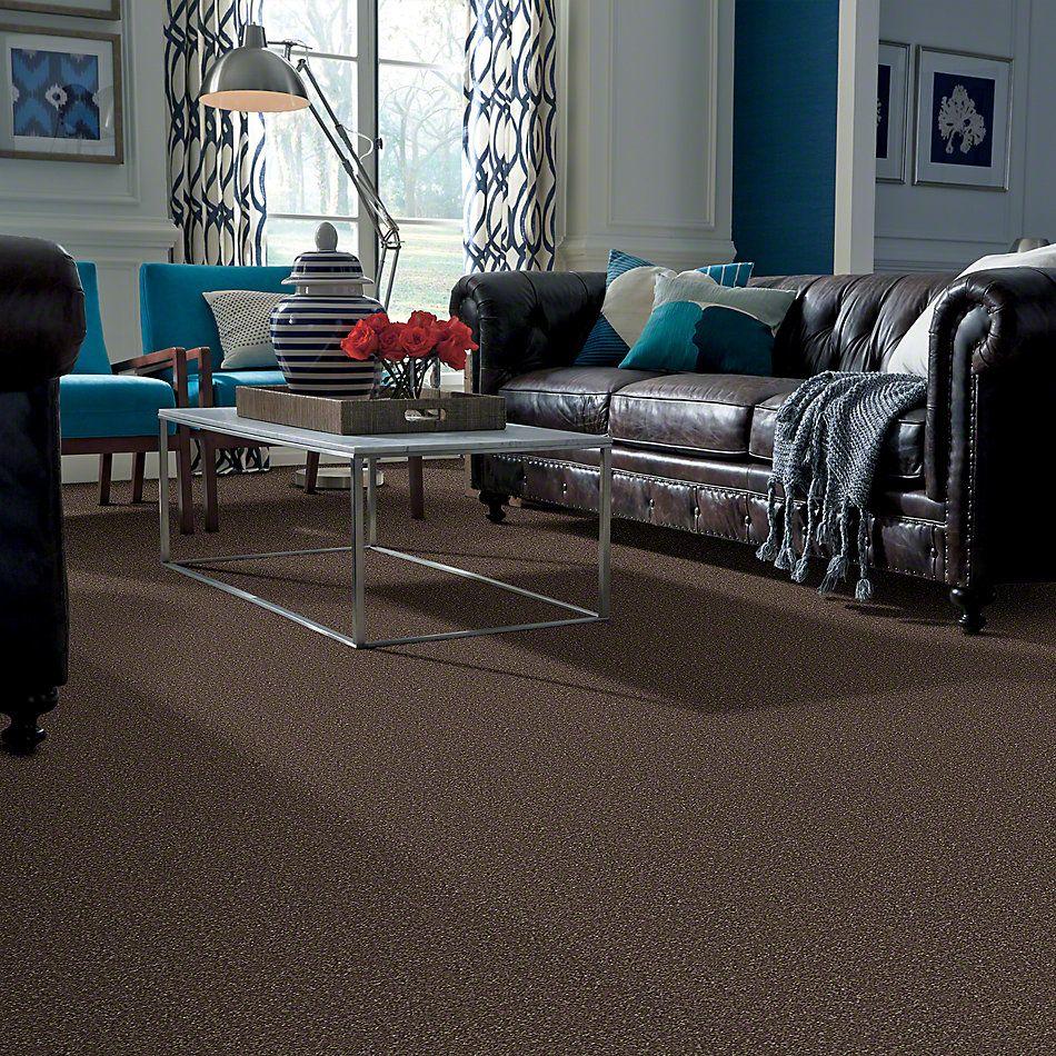 Shaw Floors Value Collections Briceville Classic 15′ Net Landslide 00702_E9197