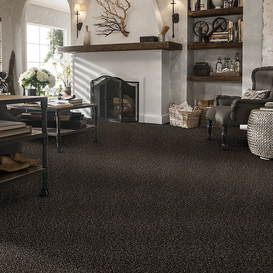 Shaw Floors Simply The Best Because We Can I 15′ River Rock 00702_E9258