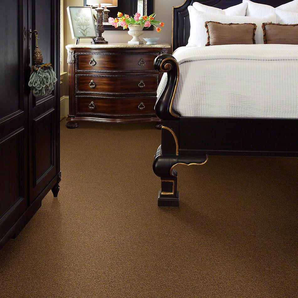 Shaw Floors Origins II Leather Bound 00702_E9301