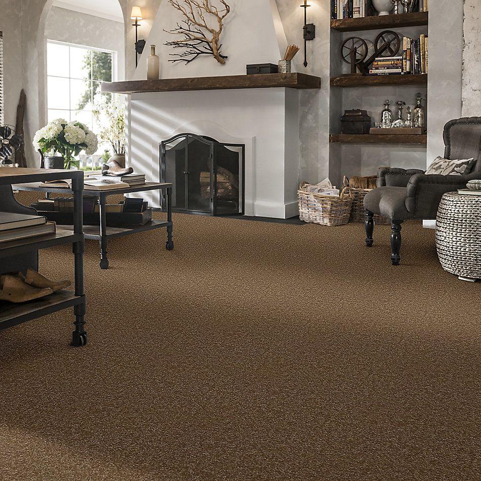 Shaw Floors Value Collections Passageway 3 Net Belt Buckle 00702_E9377