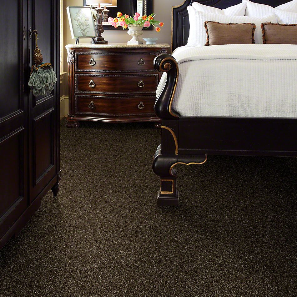 Shaw Floors Simply The Best Of Course We Can I 15′ Sedona 00702_E9422