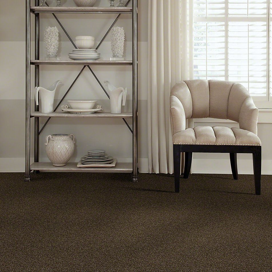 Shaw Floors Value Collections Of Course We Can III 15′ Net Sedona 00702_E9444