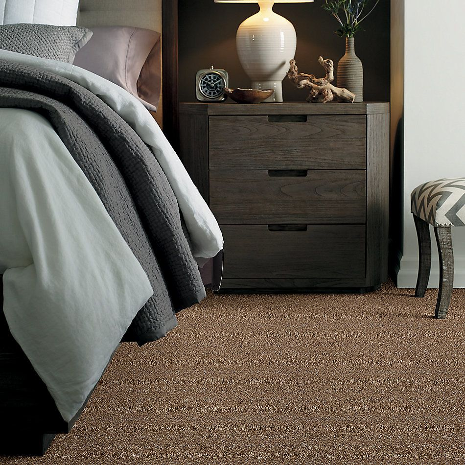 Shaw Floors Simply The Best Super Buy 65 Spruce 00702_E9601
