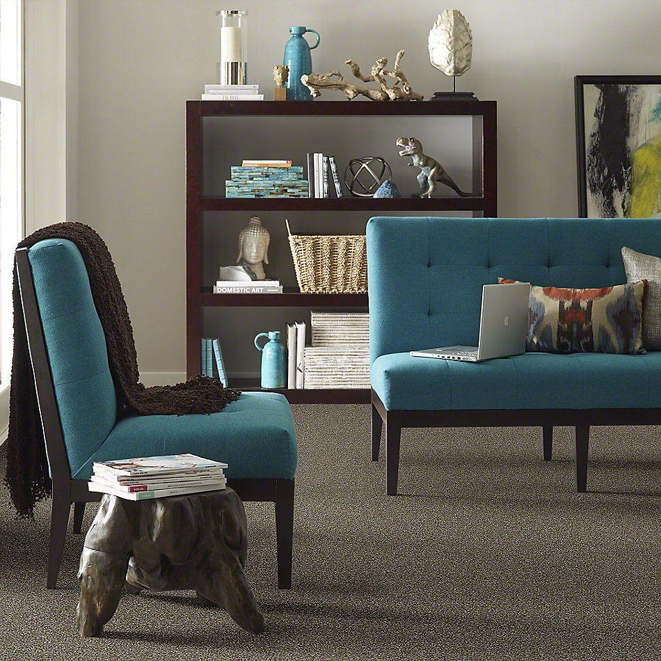 Shaw Floors Bellera Points Of Color I Mahogany 00702_E9642