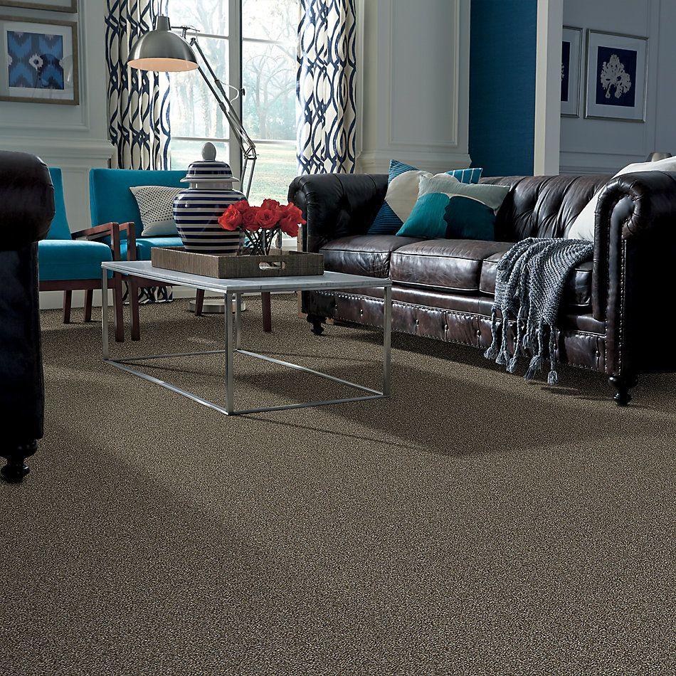 Shaw Floors Bellera Points Of Color I Net Mahogany 00702_E9785