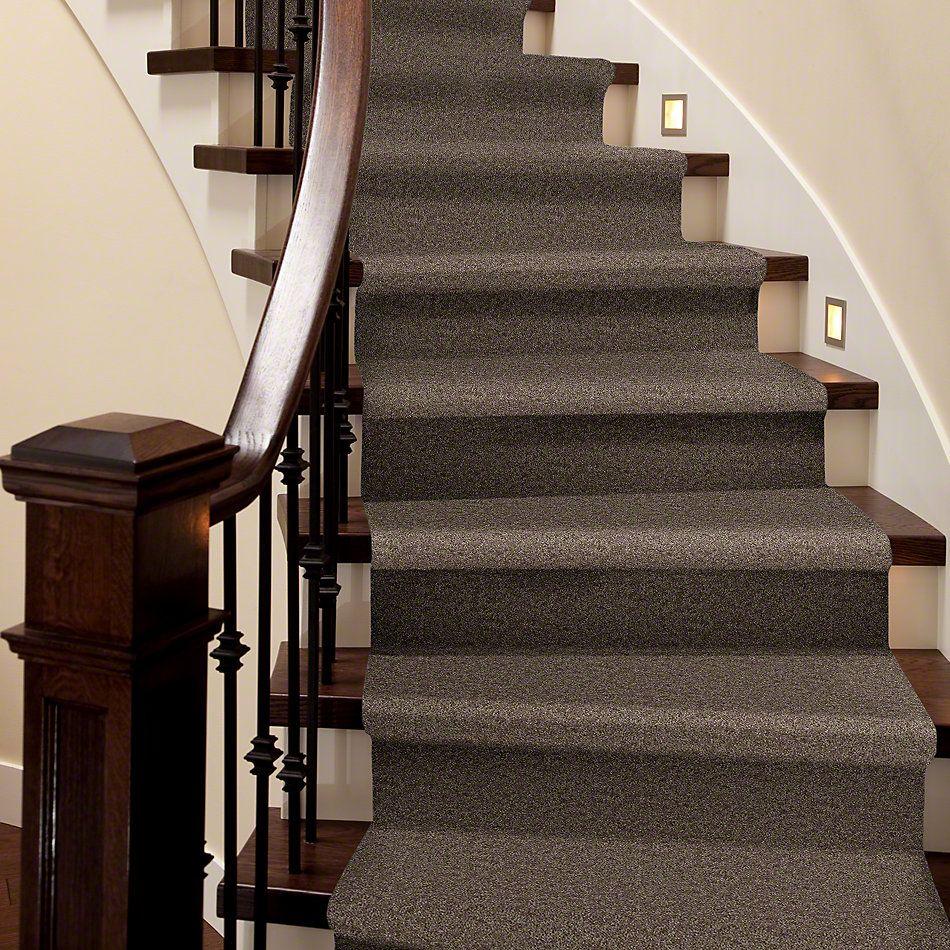 Shaw Floors SFA Drexel Hill II 15′ Cattail 00702_EA052