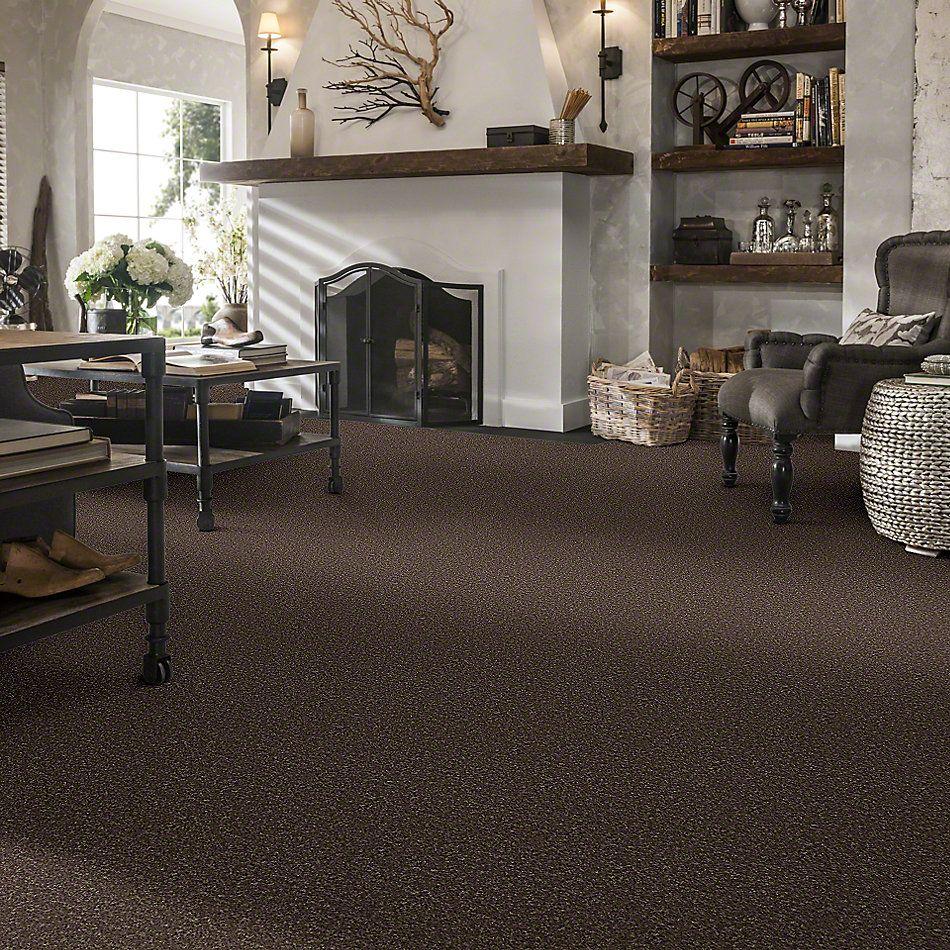Shaw Floors SFA Drexel Hill III 15 Cattail 00702_EA056