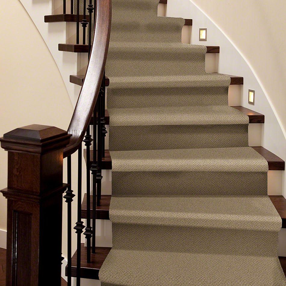 Shaw Floors SFA Sincere Beauty Loop Twig 00702_EA184