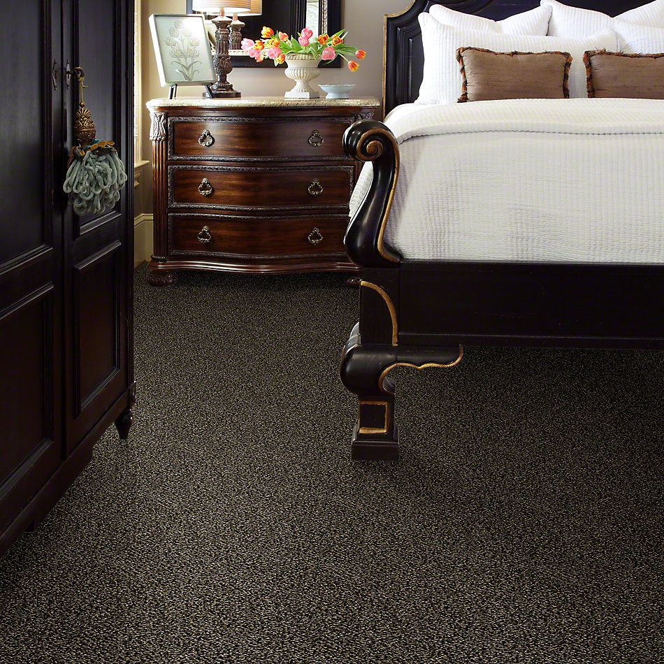 Shaw Floors Simply The Best Hypnotic Porcupine E9347_00702